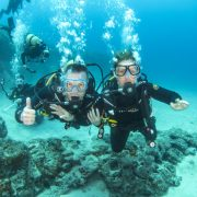 padi open water diving tenerife