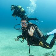 go diving in tenerife