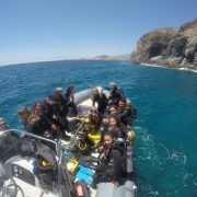 Scuba Diving Canary Islands