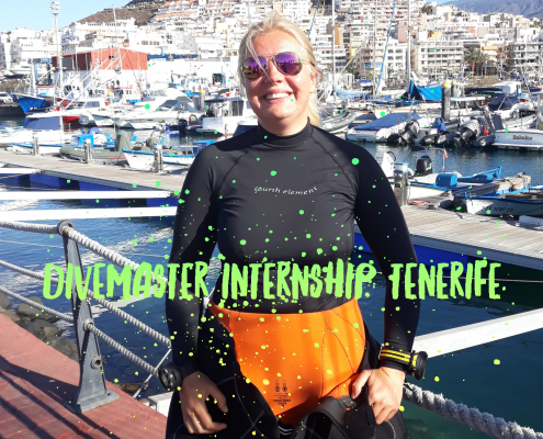 Divemaster Intern in Tenerife