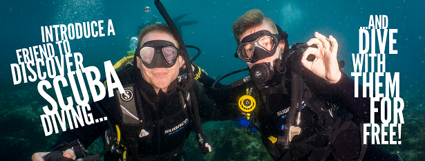 bring a friend discover scuba dive with them free