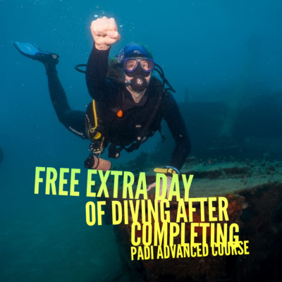 diving special offer tenerife may june 2019