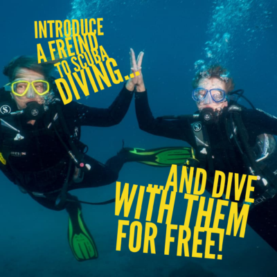 diving tenerife special offer