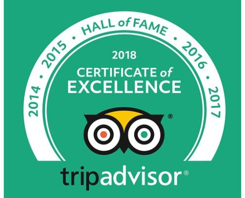 hall of fame tripadvisor diving tenerife aqua-marina